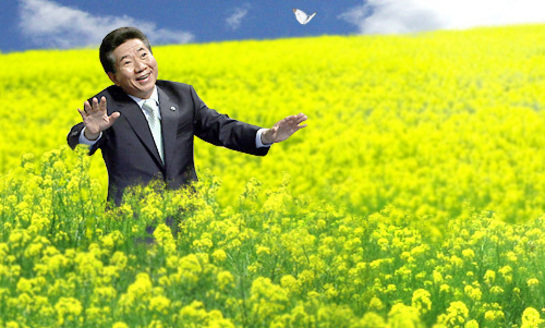 盧武鉉お花畑.jpg